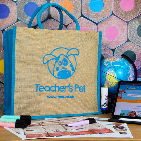 'Swag Bag' - Heavy Duty Teacher Tote Bag