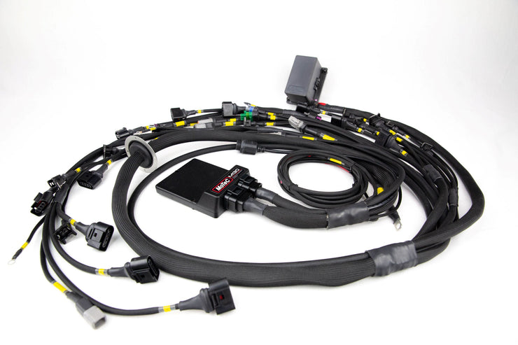 Porsche 911 Wiring Harness - Single Plug