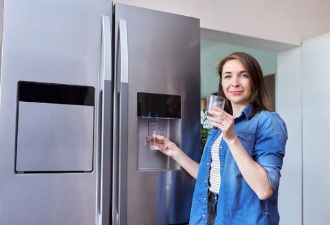 Refrigerator Water Filters Replacement