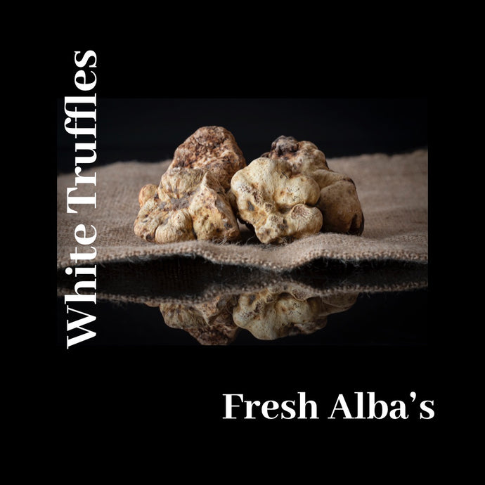 Extremely Fresh White Truffles