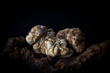 Load image into Gallery viewer, Extremely Fresh White Truffles