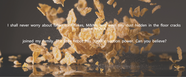 never worry about fallen corn  flakes