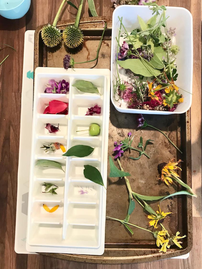 Placing flowers in an ice tray