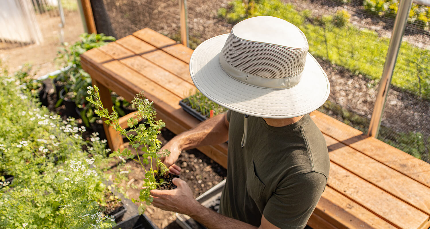 man holding a plant in a garden with a sunday afternoons charter hat on