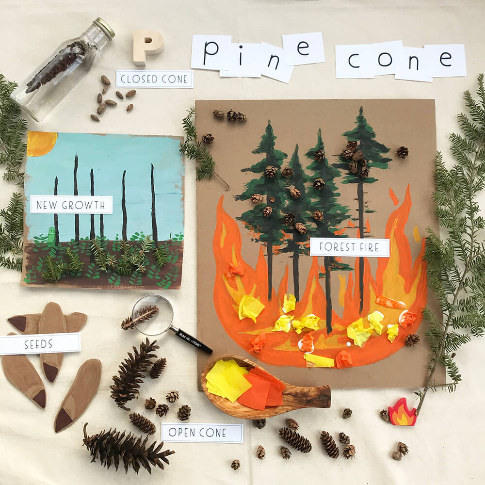 p is for pinecone paper
