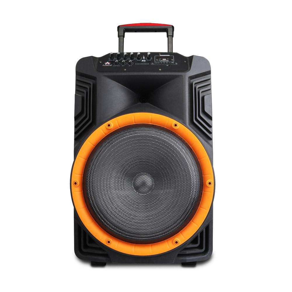 "ROYAL-50 (15"" TROLLEY SPEAKER)"