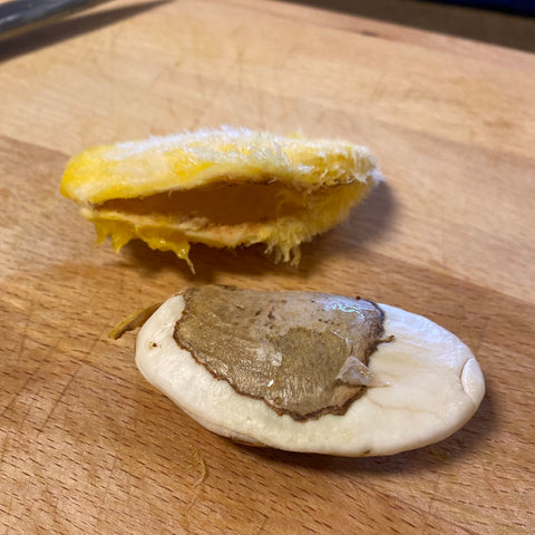 Separate the mango seed from the pit
