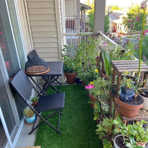 After photo of balcony garden with plant shelves for vertical gardening in a small space