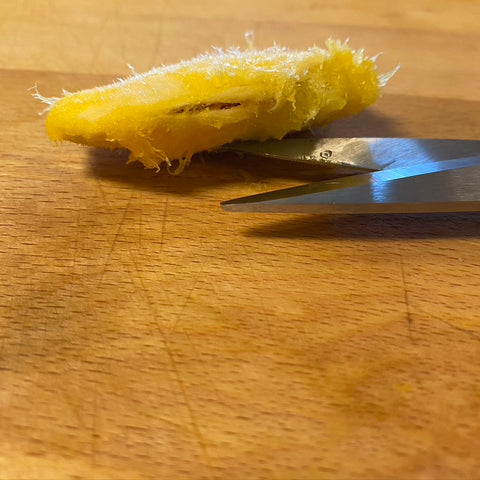 Cut mango seed exposing the internal seed that will be used to plant a mango tree