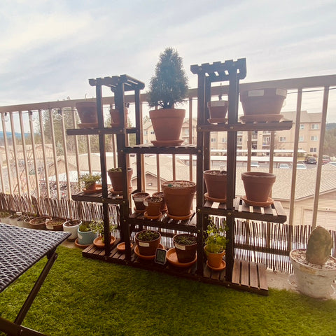 Apartment balcony with a plant stand vertical garden with container herbs and perennial vegetables