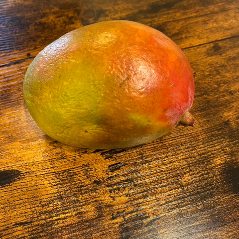 Growing a mango tree from seed at home