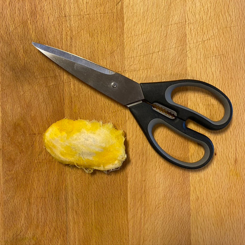 Cut around the seed of the mango pit to remove the mango seed you will be planting