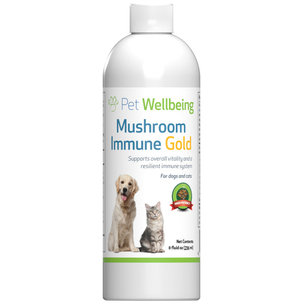 Mushroom Immune Gold - Holistic Canine Cancer Support