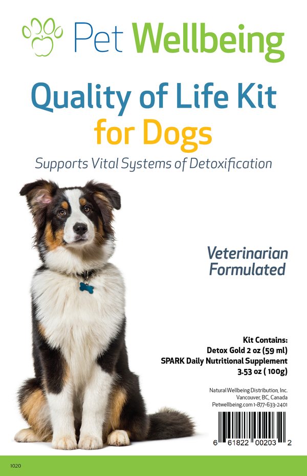 Quality of Life Kit for Dogs
