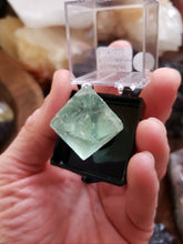 Load image into Gallery viewer, Perky Box Set - Fluorite Octahedron and Tiffany Stone