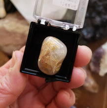 Load image into Gallery viewer, Perky Box Set - Illinois Fluorite and Rutilated Quartz