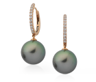 Pearl Jewellery Collection - Strands, Bracelets, Pendants, Necklaces, Rings, Earrings - Melbourne, Victoria and Brisbane, Queensland