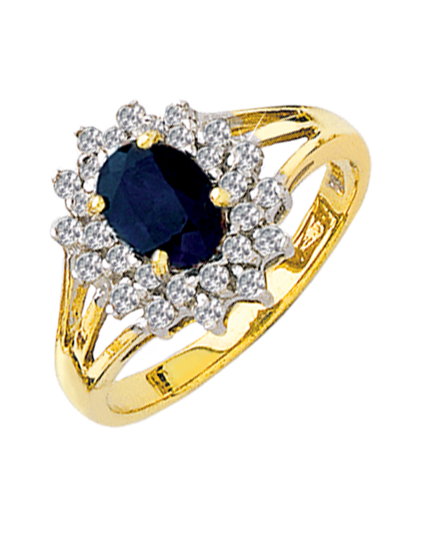 Sapphire Ring - 9ct Two Tone Sapphire and Diamond Ring - 121570 - Salera's