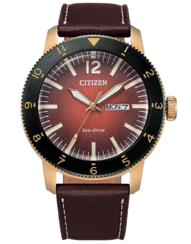 Citizen - Eco-Drive Vintage - AW0079-13X - 781538
