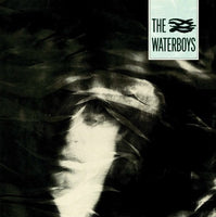 The Waterboys : The Waterboys (LP, Album, RE, RM, 180)