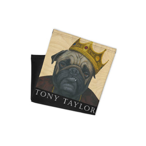 Tony Taylor - It Was All A Dream Mask