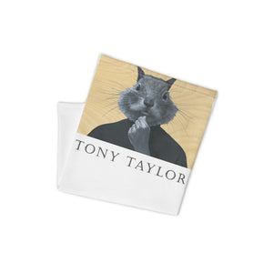 Shop and Buy Tony Taylor Art and Masks