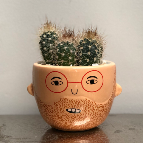 Ross Ceramic Face Planter  - Cactus Planting Kit