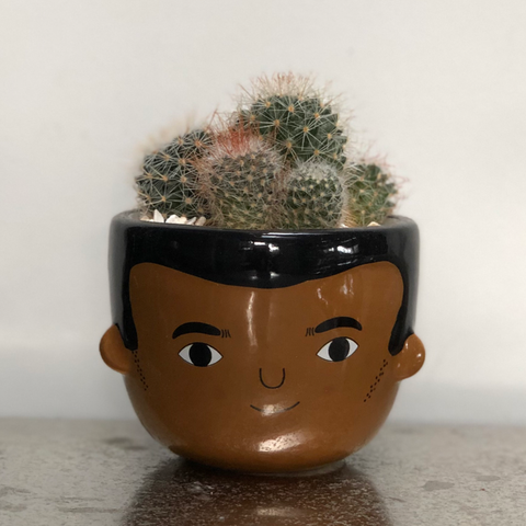 Ezra Ceramic Face Planter - Cactus Planting Kit