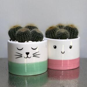 Pink and White Smiley Face Ceramic Planter Cactus Planting Kit