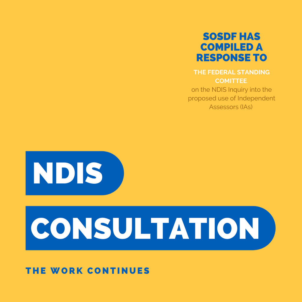 NDIS Consultation - the work continues: