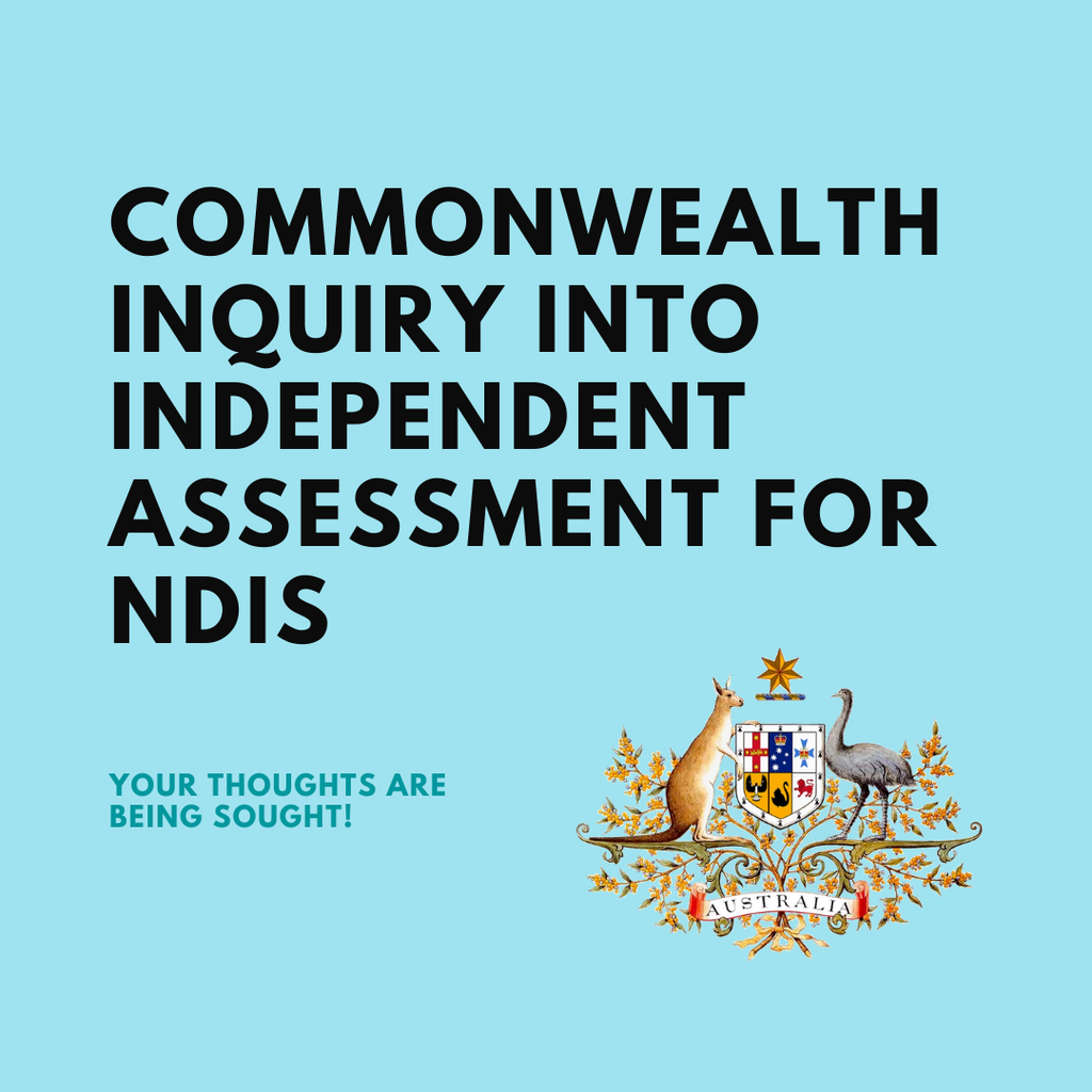 Commonwealth Inquiry into Independent Assessment For NDIS