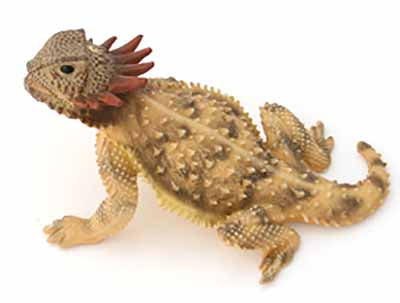 Regal Horned Lizard Painted Figurine 3""