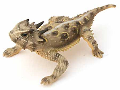 "Texas 3.5"" Horned Lizard, Male, Painted Figurine with Tail Out"