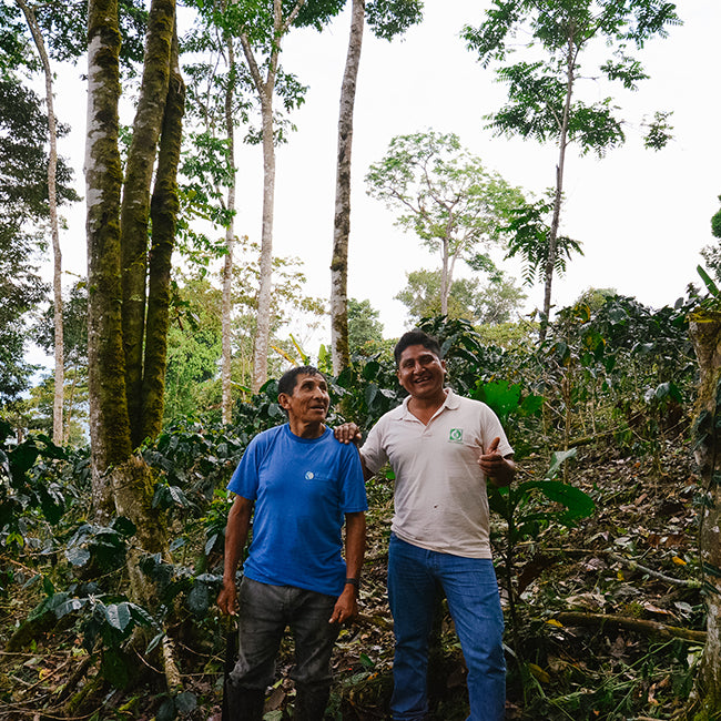 Two men standing in forest