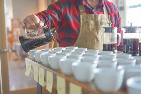 Man pouring brewed coffee from french press into mugs for cupping