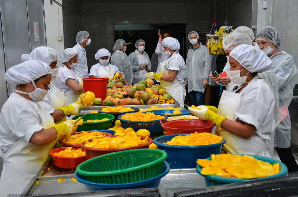 Fruandes employees in white hair nets and aprons, slicing mango