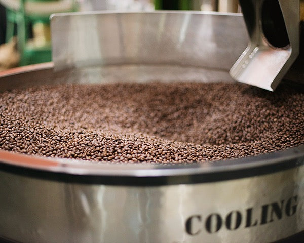 Roasted coffee in cooling tray