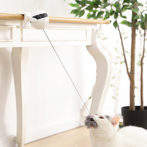 Interactive Electric Automatic Lifting Cat Ball Toy