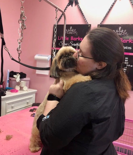 dog groomer in the Columbia Irmo area in South Carolina 29212,29063,29072,29210 Little Barks offers. a. luxury dog grooming experience ,we specialize in skin and coat health. AKC safe certified and An Fear Free Certified Salon. IV Sans Bernard ozone cert