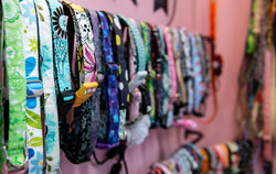 Little Barks Boutique cotton collars made in the USA. located at 6030 Saint Andrews Road Columbia SC 29212 Available in over 40 fabric choices and sizes to fit all dogs. Cotton Dog collars in Columbia Sc
