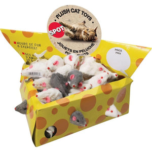 SPOT MICE CHEESEBOX DISPLAY