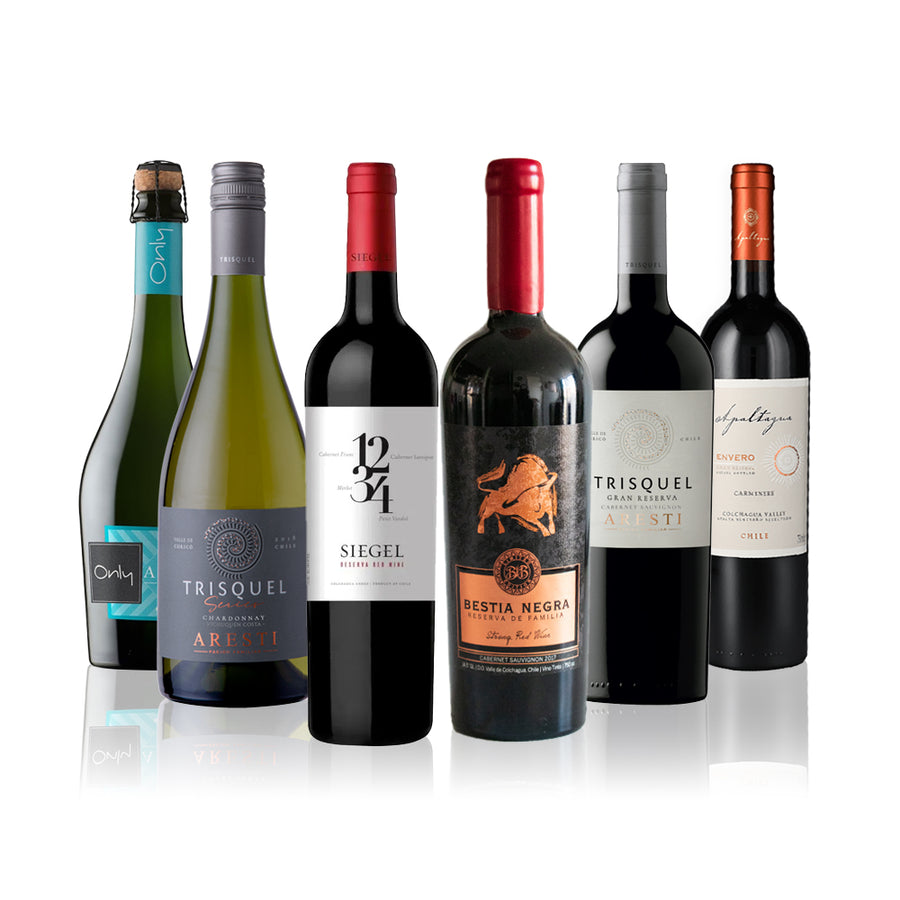 Summer Gold 6 Pack, Mix Vinos, Tintos y Blancos, Espumante, 750cc