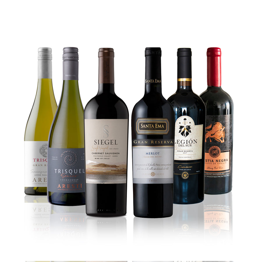 Summer Gold 6 Pack, Mix vinos tintos y blancos, 750cc