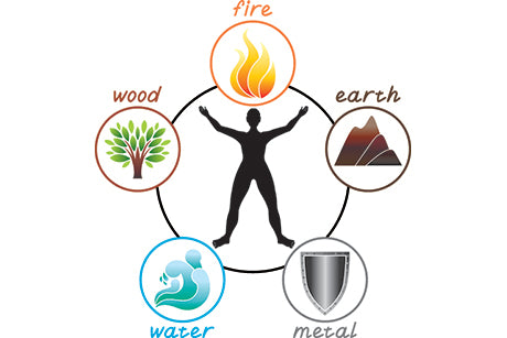 5 Elements of Nutrition