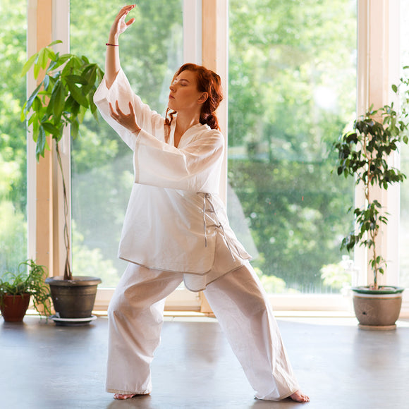 Virtual QiGong Classes