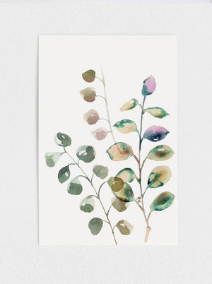 11x17 Eucalyptus Original Watercolour Painting