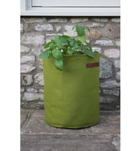 Vigoroot Potato and Tomato Planter