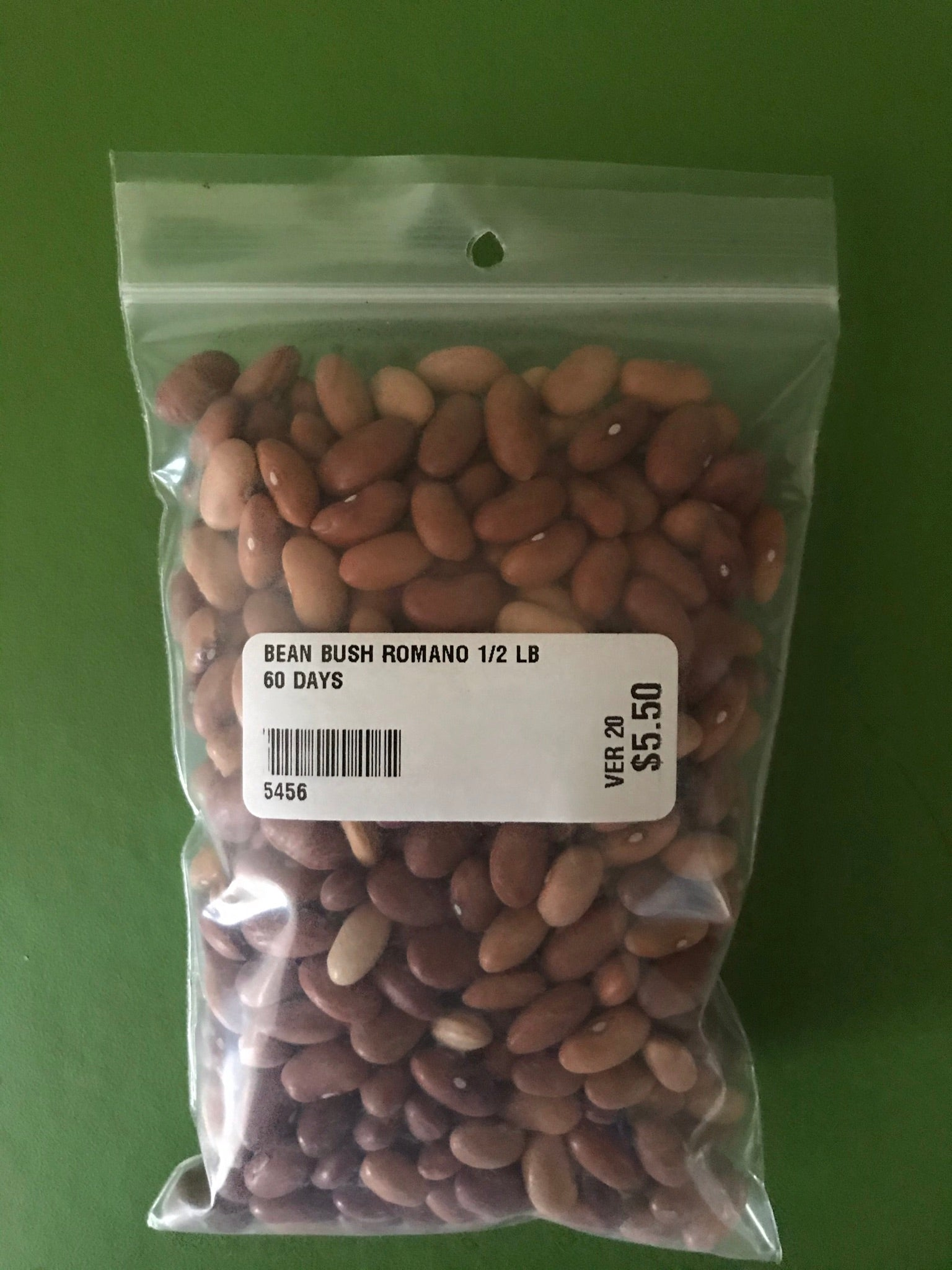 Romano No. 14 Bush Bean Seeds (60 Days) - 1/2 lb - Bulk