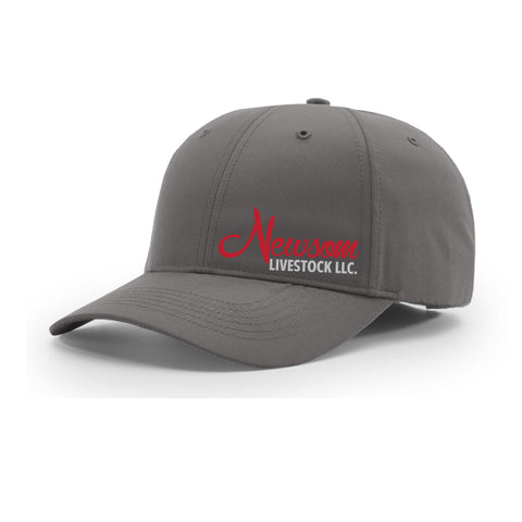 Newsom Livestock/Champion Technologies Richardson 225 Hat - Charcoal - Structured