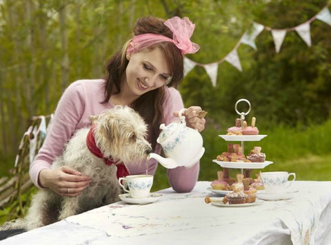 Herbal Tea for Pets